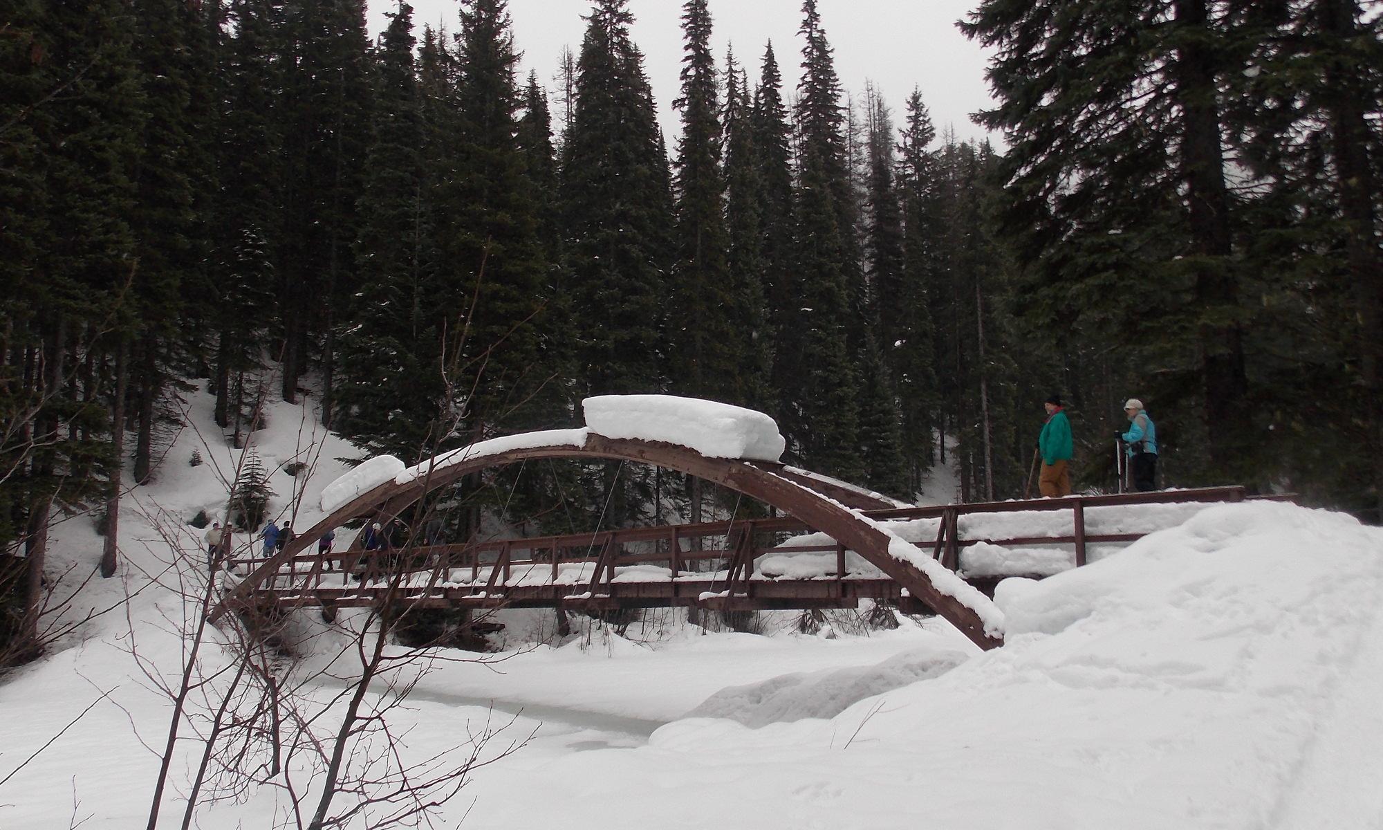 Header: Lightning Lake Snowshoe