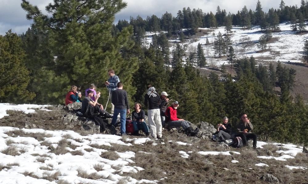 Header: Rock Ridge Knoll