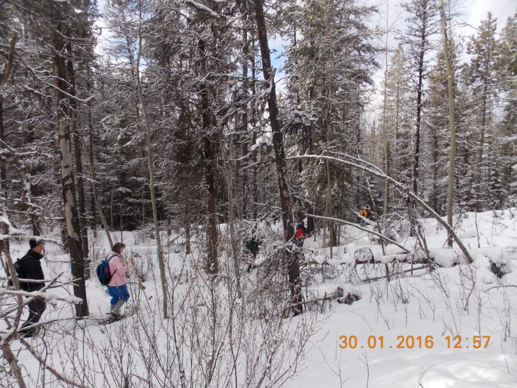 Photo: Secret Lake Snowshoe
